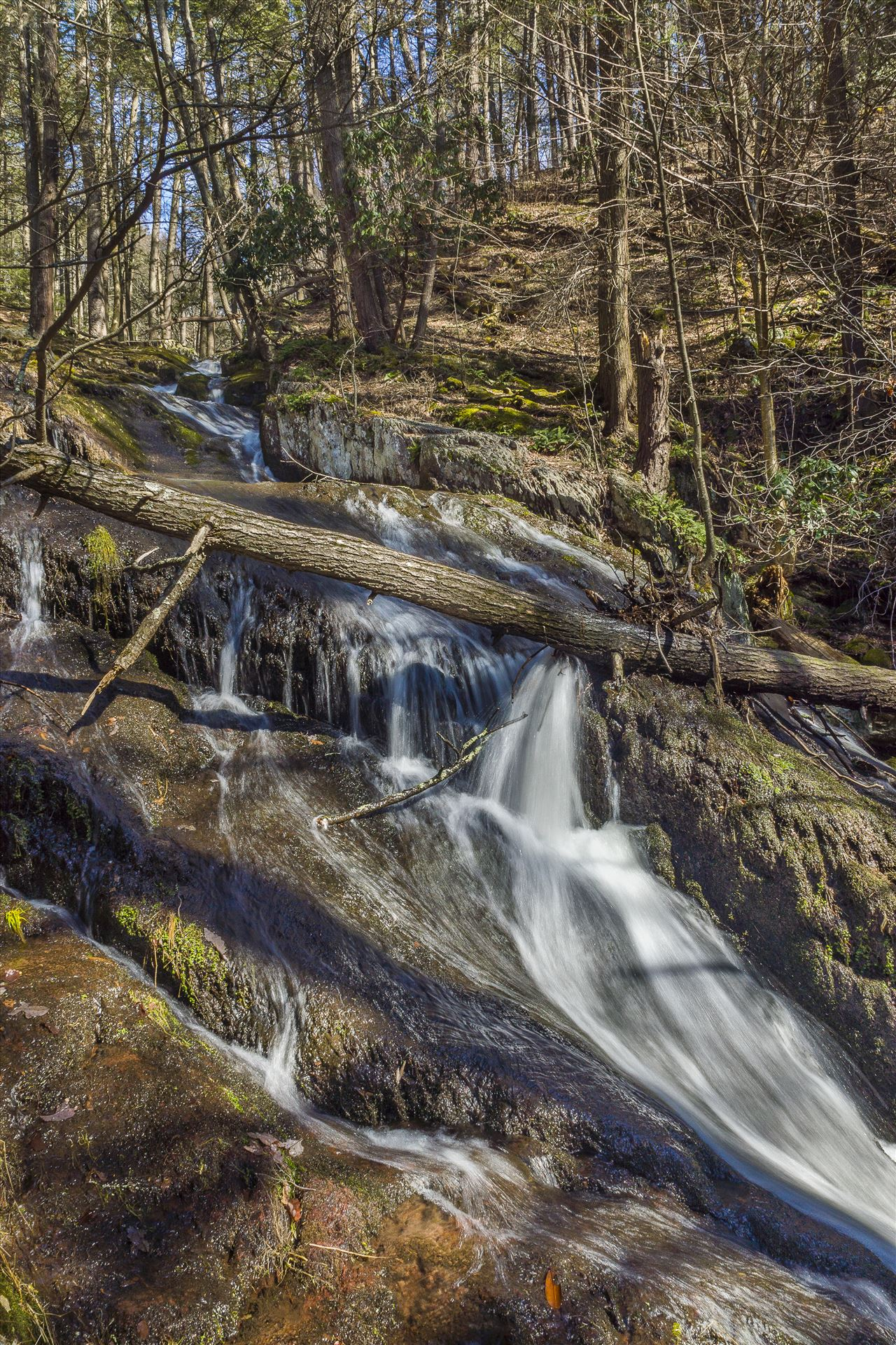 Tillman's Ravine - Northern, New Jersey in Stoke's Forest by Buckmaster