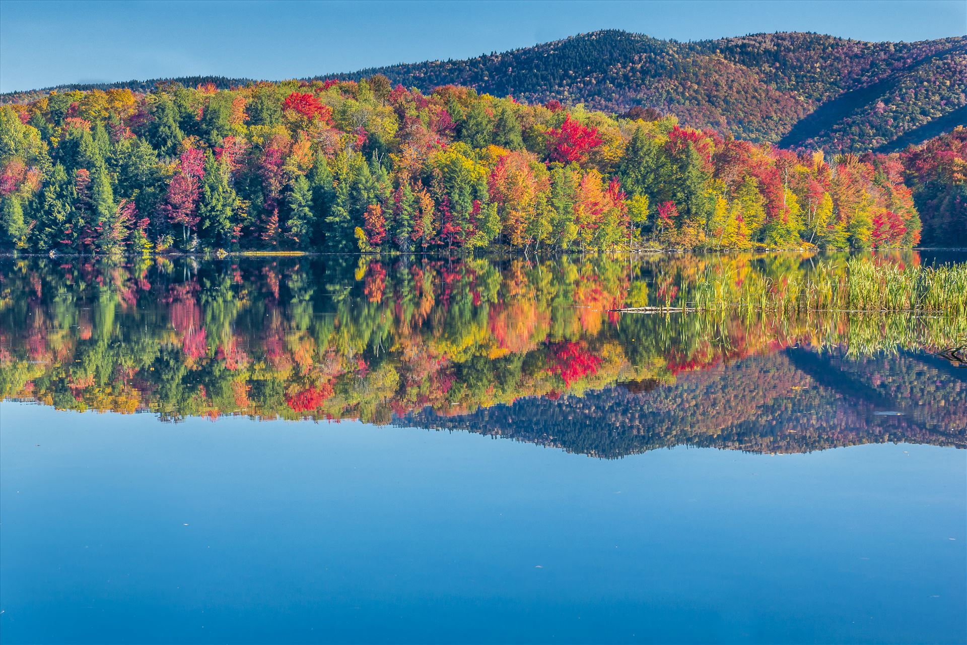 Vermont Fall Foliage - Vermont Lake in Beautiful Fall Colors by Buckmaster