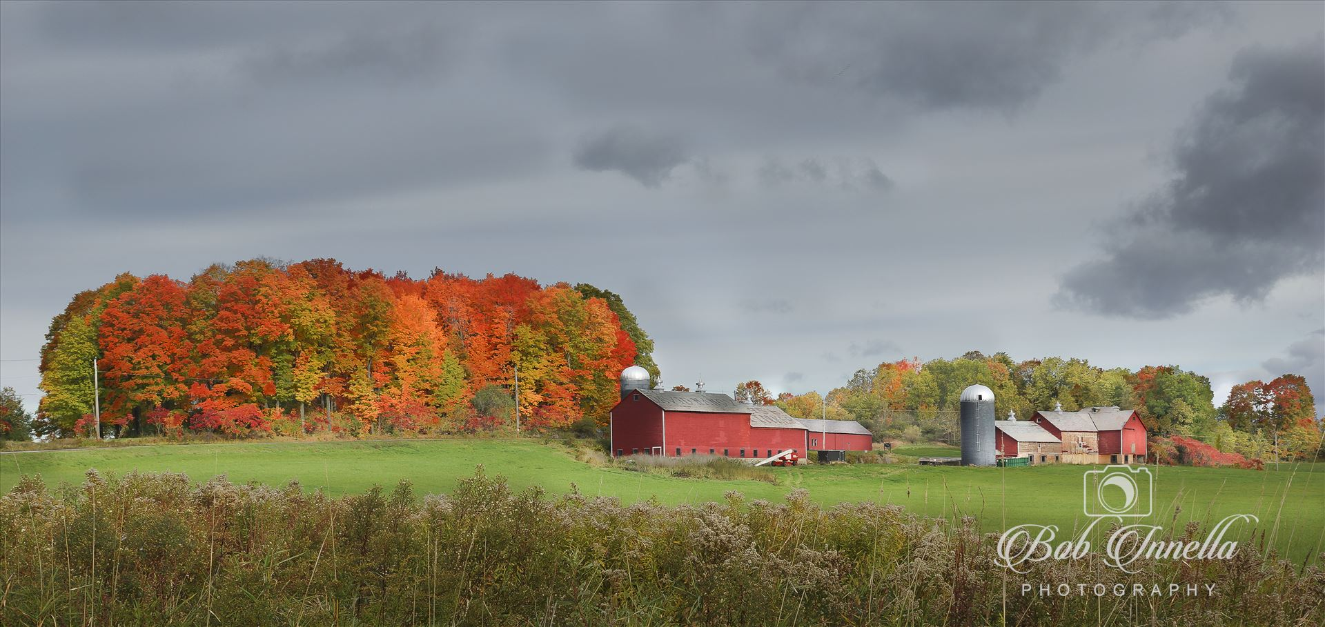 Vermont Red Barns - Farm in Brandon, Vermont by Buckmaster