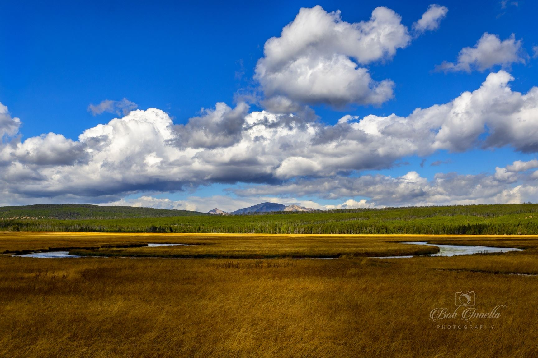 Somewhere in Yellowstone National Park -  by Buckmaster