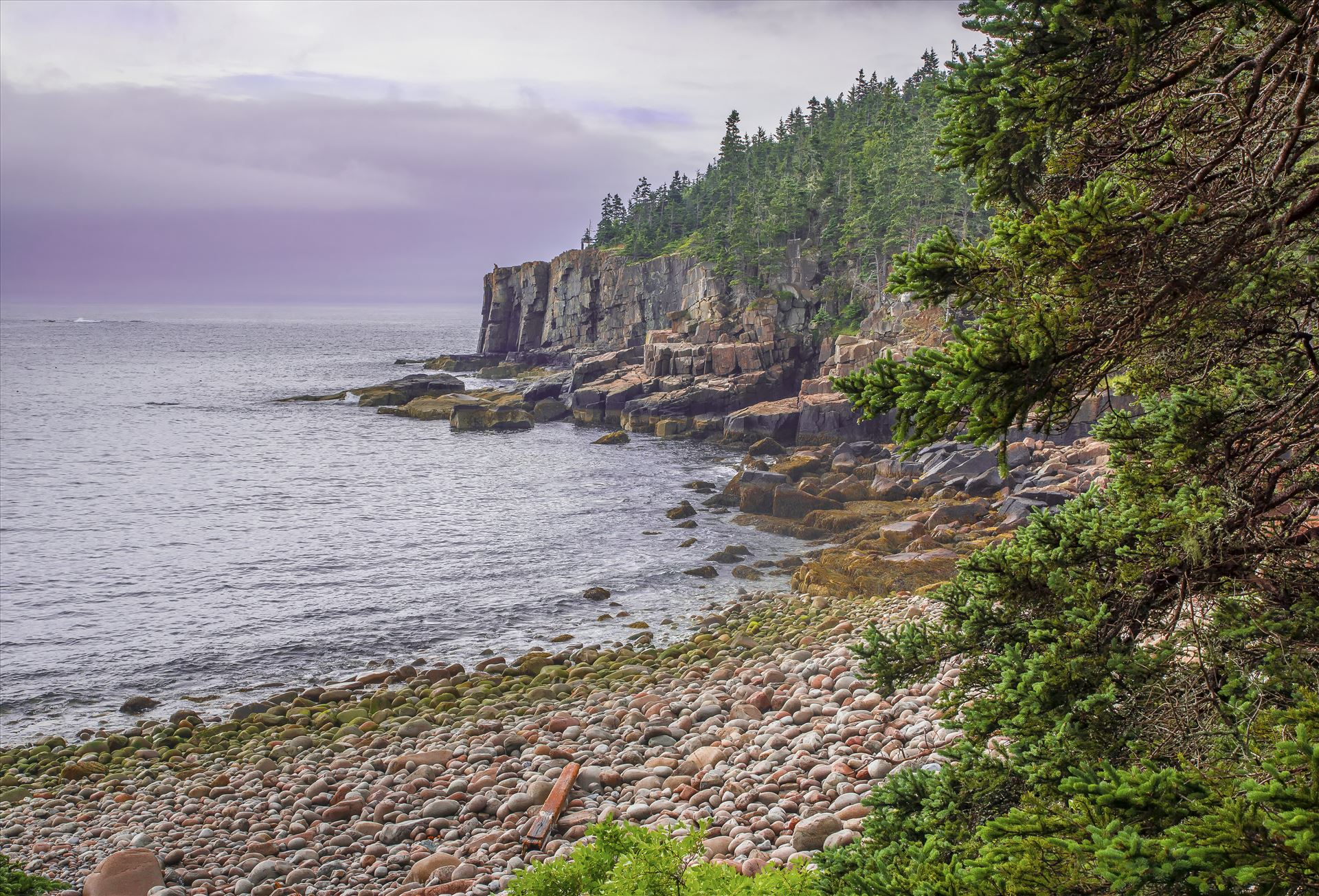 Otter Cliffs in Acadia - Famous Otter Cliffs in Acadia National Park, Bar Harbor, Maine by Buckmaster