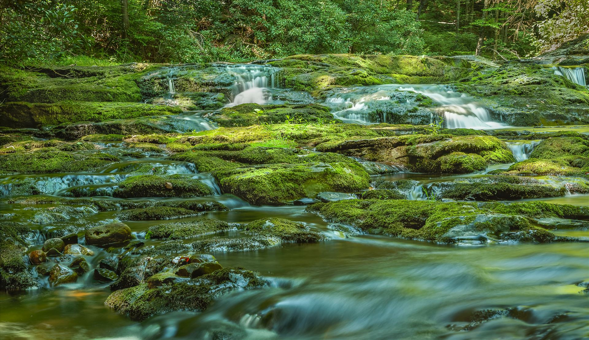 Dingmans Brook - Dingmans, Pennsylvania by Buckmaster