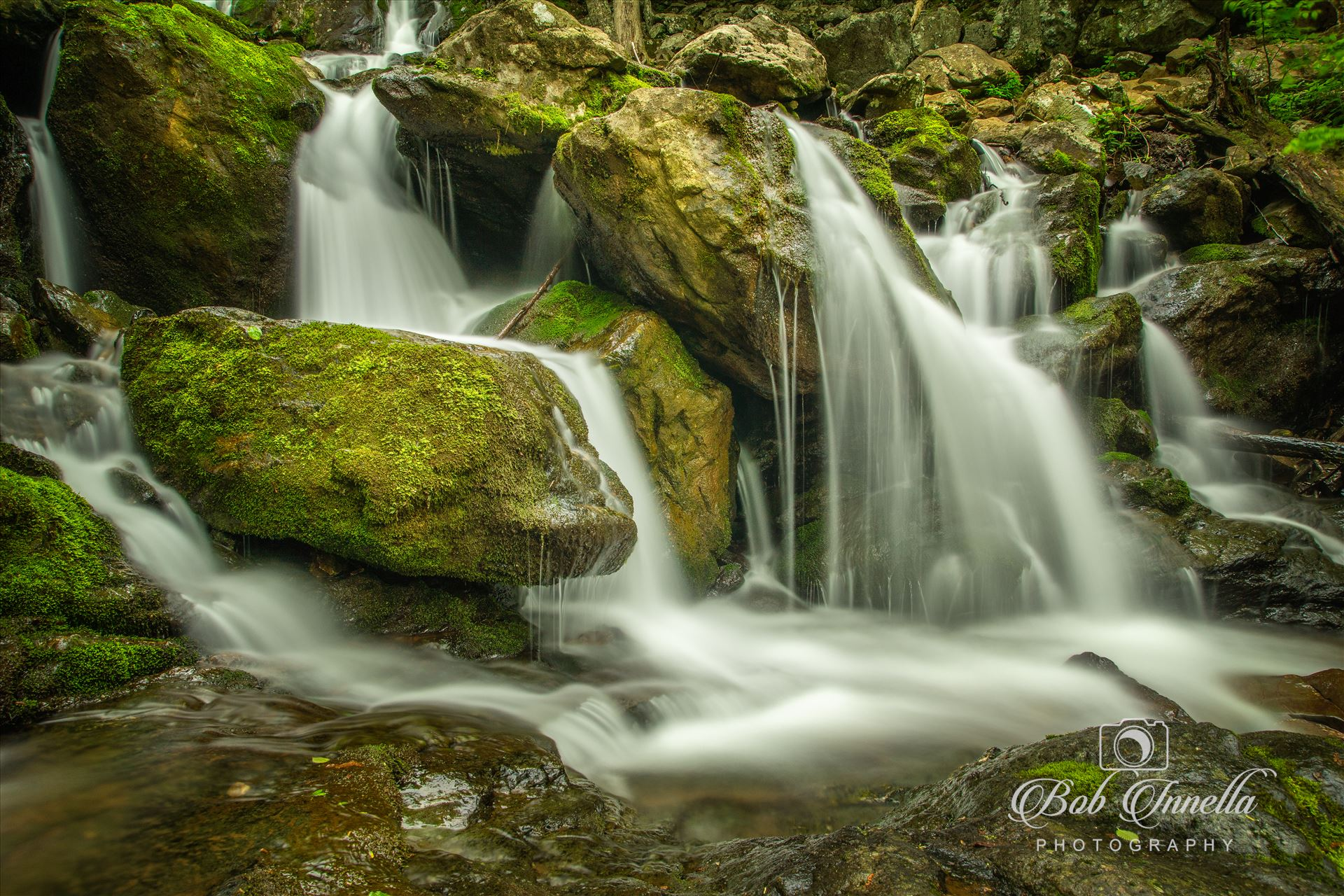 Dark Hollow Falls - Dark Hollow Falls in The Shenandoah Mountains, Virginia by Buckmaster