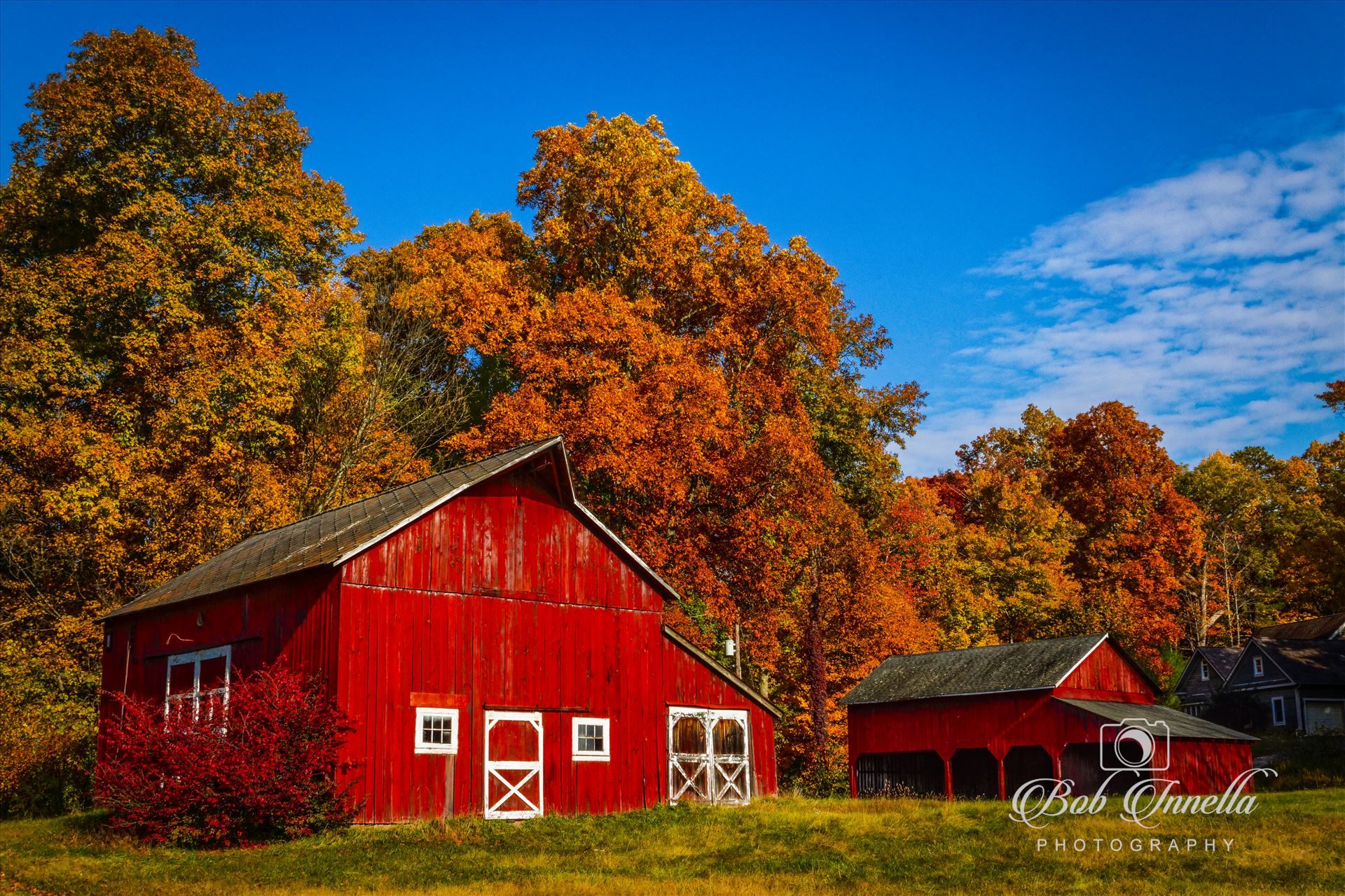 Hainesville, Nj Red Barn   Farm-.jpg - Red Barn Farm in Hainesville, New Jersey by Buckmaster