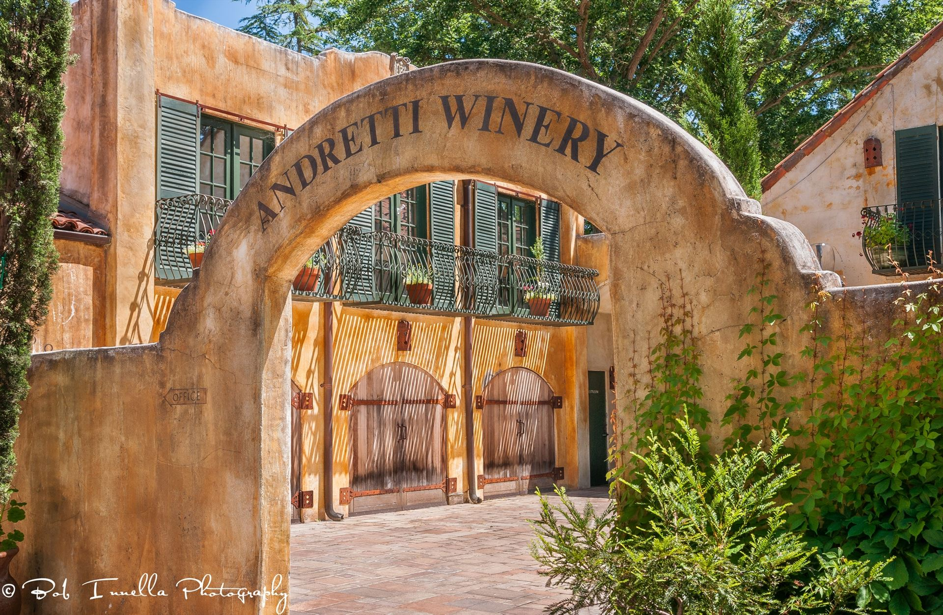 Andretti Winery, Napa, CA3 -  by Buckmaster