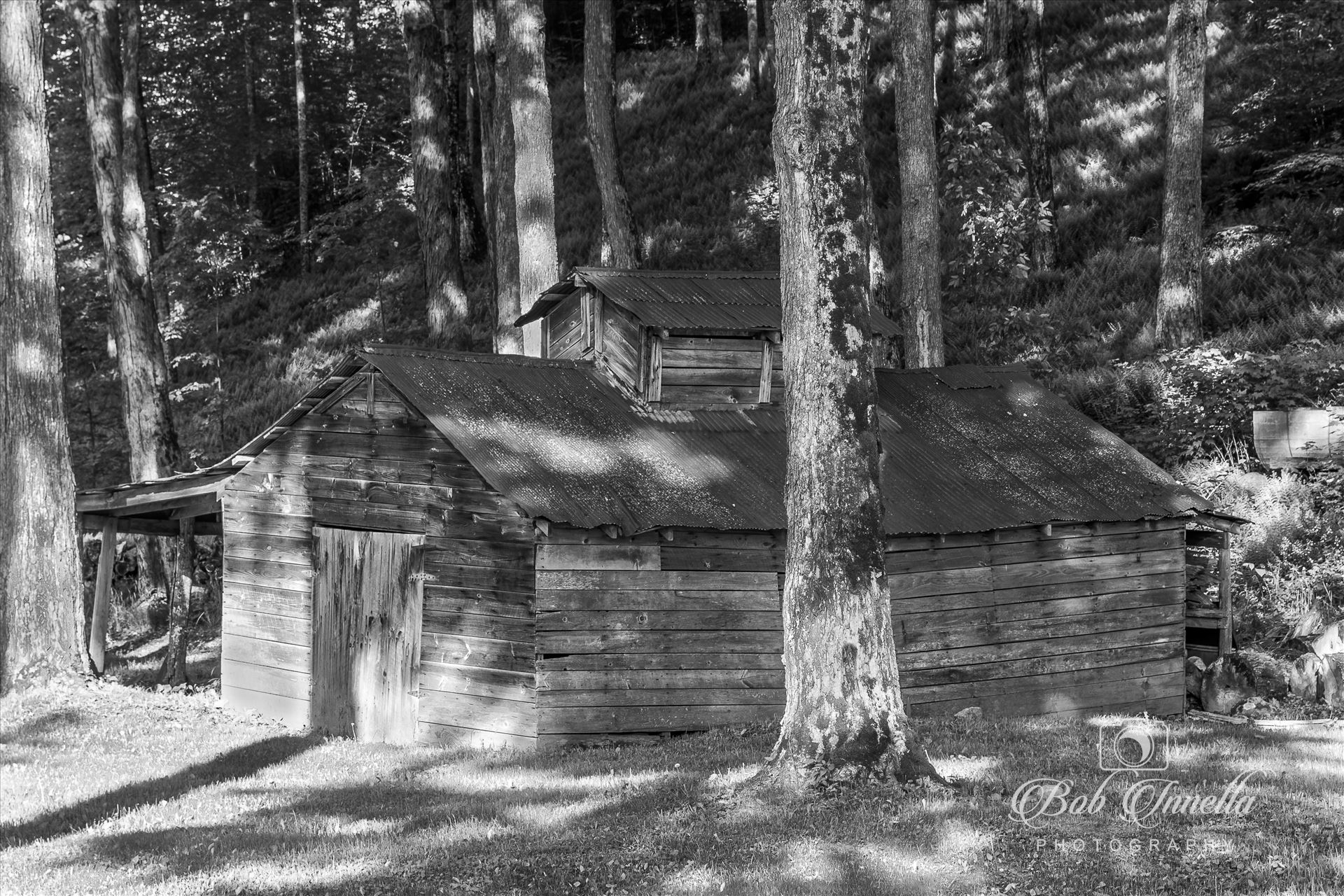 Old Vermont Sugar House in Black and White - Medon, Vermont Old Sugar House by Buckmaster