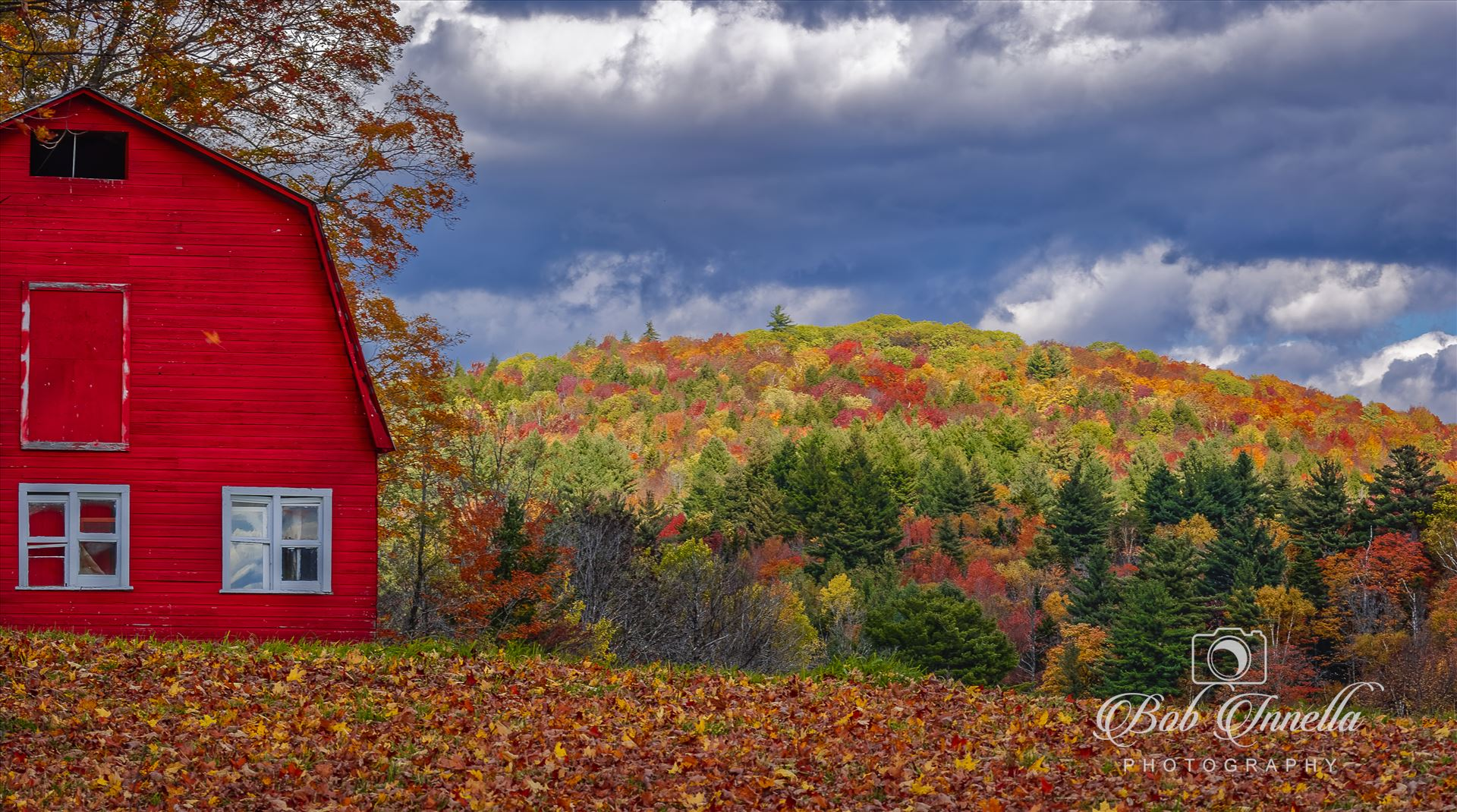 Vermont Red Barn - Vermont Red Barn with October Foliage Colors by Buckmaster