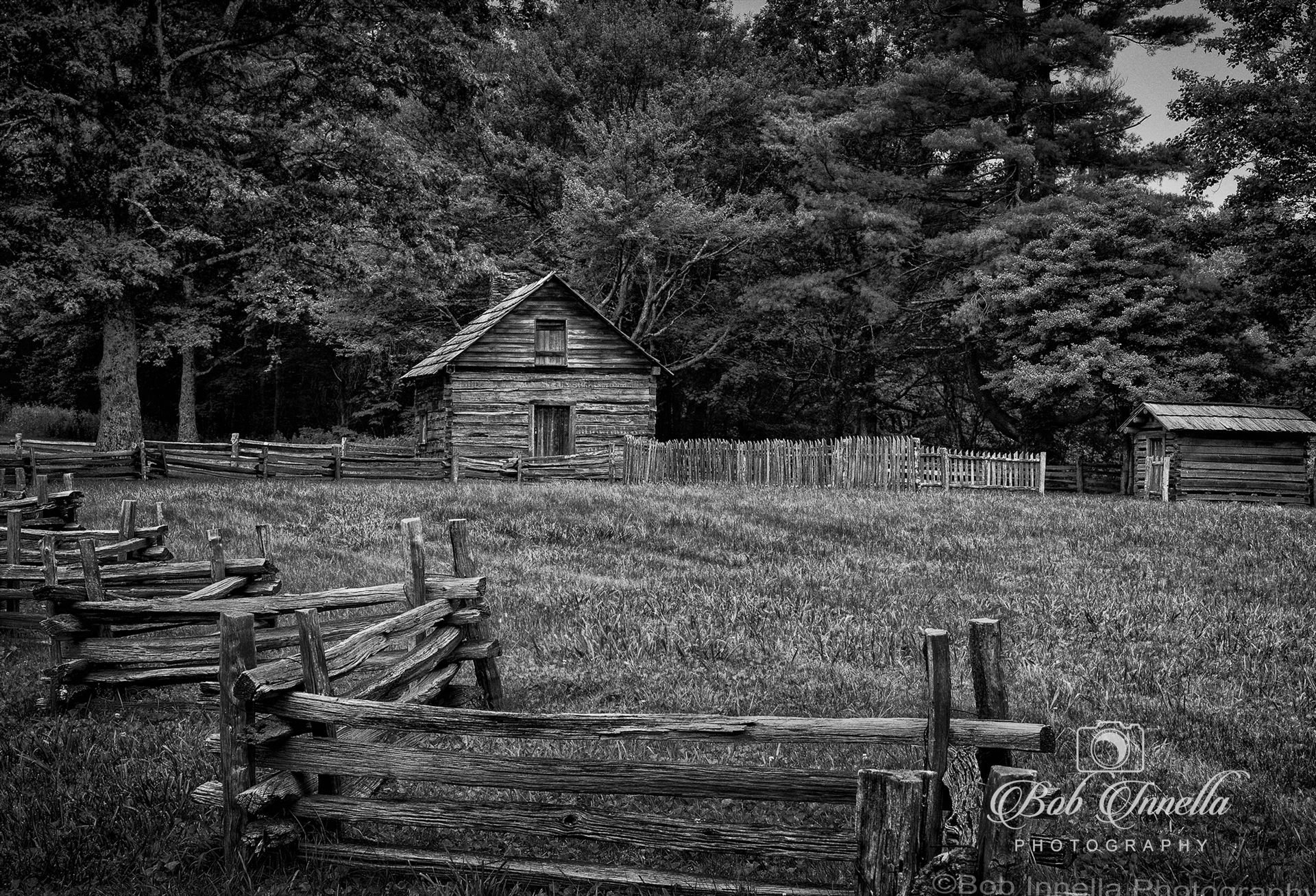 Puckett Cabin On Blue Ridge Parkway, Virginia -  by Buckmaster