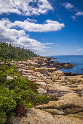 Acadia,Maine Coast - Acadia National Park, Maine