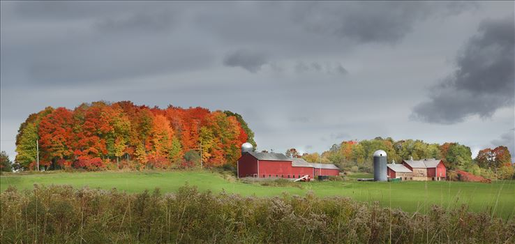 Preview of Vermont Red Barns