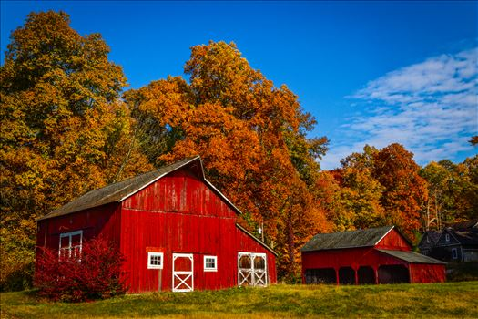 Hainesville, Nj Red Barn   Farm-.jpg - Red Barn Farm in Hainesville, New Jersey