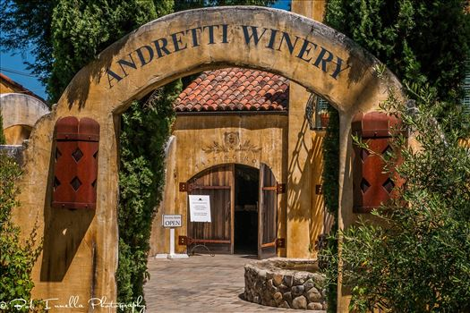 Race Car Driver Mario Andretti's Winery
